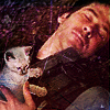 esteefee: (col_kitty)