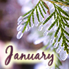 petzipellepingo: (january by magic_art)