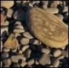 the_nita: (Rocks)