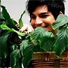 littlemousling: Adam Lambert and a plant (plantbert)