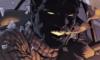 valtyr: (Nightcrawler)