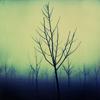 shadowspirit: (Overcast - wasteland)