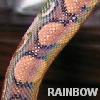 frekiandgeri: (rainbow)