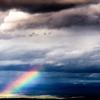 missroserose: (After the Storm)