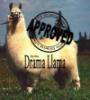 amazon_syren: (Drama Llama)