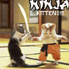 hippie_chick: (NINJA KITTEHS!!)