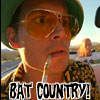 hippie_chick: (Johnny Depp / Fear and Loathing)