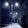 the_islander: (snow)