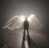 dauntperplexity: (Angel Wings)
