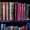 beckymonster: book spines (art_books)
