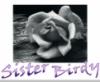 birdygirl20: ()