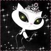katsparkles: (Mizno Junko cat)