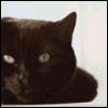 aglarien: (12Teddy by catwench)
