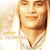 aglarien: (Glorfindel by ardisia)