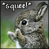 "neotoma: ""Squee!"" goes the bunny (SqueeBunny)"