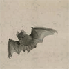 quillori: painting of a bat (subject: vampires (bat))