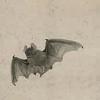 quillori: painting of a bat (subject: bats, subject: vampires (bat))