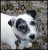 genkireirei: I love and miss you Jo! (Jo Jo)