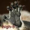esteefee: (lemur-hi5)