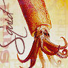 gnomad: Red Squid, Yellow Background (Default)