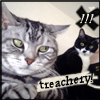 replyhazy: (treachery by spacerider)