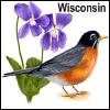 replyhazy: (Wisconsin)
