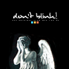 moonie: (W10 - don't blink)