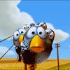 moonie: (X - birds)
