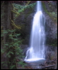 verushka70: I took this photo of a waterfall at dusk in Olympic National Park in 2009. (waterfall)
