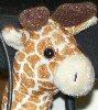 lizziec: (toys - Duster Giraffe)