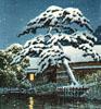 feochadn: (House in snow)