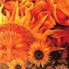 ashtoreth: (sunflower)