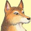 professorwolf: (wolf-perky)