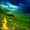 auburn: Yellow path against green countryside (Golden Path)