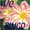 hc_bingo: (hc bingo)
