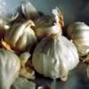 thesoupfairy: (garlic)