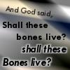 daidoji_gisei: (Shall bones live?)