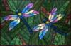 yinepus_brat: (quilted rainbow dragonflies)