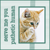 "cesy: ""Serve me you pathetic human"" with a cute cat. (Serve me)"