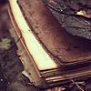talvihorros: (old book) (Default)
