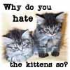 darkrose: (kittenhate)