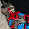 octopedingenue: (friendly neighborhood spider-hug)