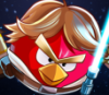 kenwyn89: Luke Skywalker (bird, Luke)