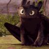 totchipanda: (Toothless: Baroo?)