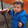 kate_nepveu: toddler in blue jacket standing with one hand on rope and wood ladder (The Pip - standing outside (2012-11))