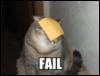 solanine: (failcat)