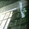 nundinae: (library)
