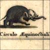 nundinae: very angry elephant (very angry elephany)