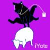 cyrano: (iYote)