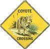 cyrano: (Coyote Xing)